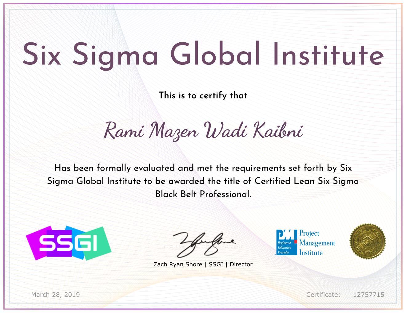 Lean Six Sigma Black Belt Professional (LSSBB)